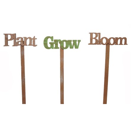 Bloom Plant Grow Picks